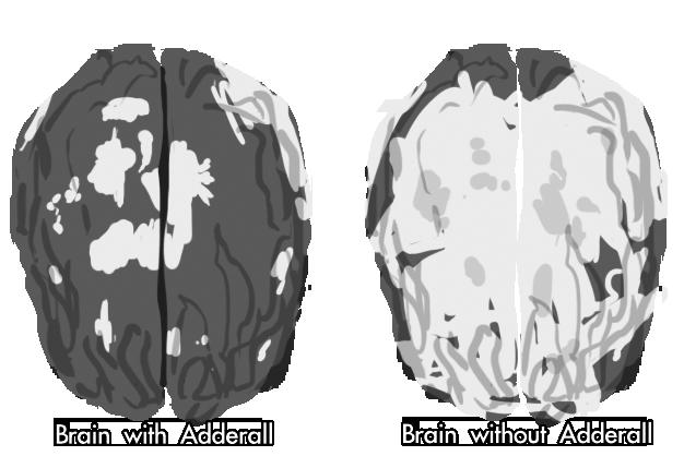 brains 4 hanna