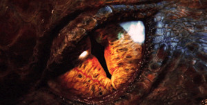 'Desolation of Smaug' unveils the much-anticipated animated dragon; fans were given a sneak preview to the end of the last 'Hobbit' film.