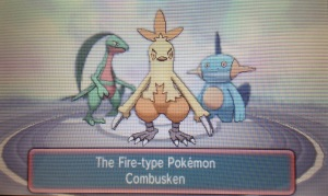 You are given the choice between second stage Hoenn starters,
